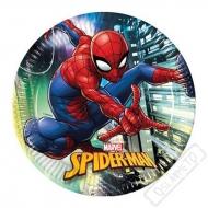 Papírové party talíře Spiderman