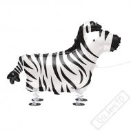 Chodící balónek Zebra 76cm